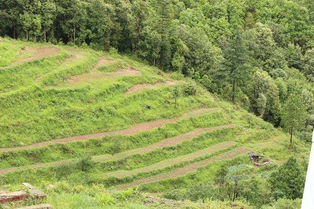 Best Places to Visit in Ranikhet